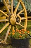Einzelnes Wagenrad von einem horse-drawn Wagen Stockbilder