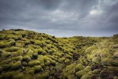 Einzigartige Lavafelsformationen umfasst im Moos in Island Lizenzfreie Stockfotografie