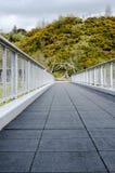 Einzigartige Perspektive einer leeren Fuß-Brücke mit Baumgrenze Backgr Lizenzfreie Stockfotos