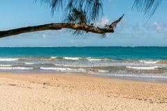 Einzige Ausdehnung des Strandes Stockfoto