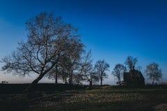 Einzige Kirche im Park unter Bäumen Stockfotos