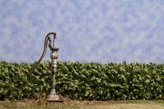 Einzige Quellwasser-Handpumpe - Landschaft Stockfoto