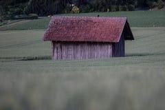 Einzige Scheune auf dem Korn-Gebiet Stockbilder