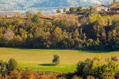 Einziger Baum und ländliches Haus in Piemont, Italien Lizenzfreies Stockfoto