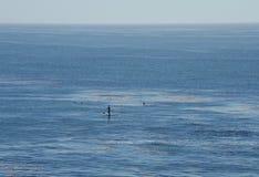Einziger Paddelinternatsschüler im Ozean Lizenzfreie Stockfotos