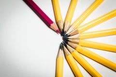 Einziger roter Bleistift gegen eine Gruppe gelbe Bleistifte Lizenzfreie Stockbilder