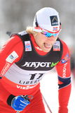 Eirik Bransdal - cross country skier Stock Photos