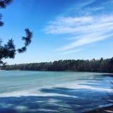 Eis auf einem See und einem Wald lizenzfreie stockbilder