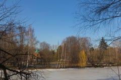 Eis auf einem Teich auf dem Teich Stockfotos