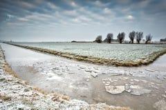 Eis auf gefrorenem Fluss im niederländischen Ackerland Lizenzfreie Stockfotos