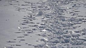 Eis bedeckt mit weißem Schnee als abstrakter Winterhintergrund stock video footage
