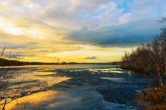 Eis-bedeckter Wald des Sees im Frühjahr Stockfotografie