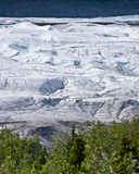 Eis-Bergsteiger auf Wurzel-Gletscher Lizenzfreies Stockfoto