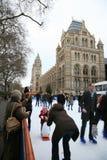 Eis-Eisbahn des Naturgeschichte-Museums Stockfotos