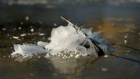 Eis, Kristalle und der Stiel stockfotos