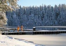 Eis-Loch Schwimmen im Winter Stockbild