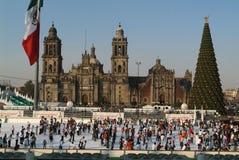 Eis-Schlittschuhläufer vor Kathedrale Metropolitana, M Stockbild