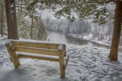 Eis, Schnee, Baum, Winterflussszene Stockfotos