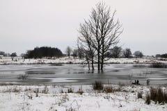 Eis und Schnee auf dem See Lizenzfreie Stockbilder