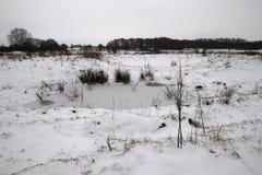 Eis und Schnee auf dem Teich Stockfotos