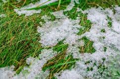 Eis und Schnee, die auf grünem Gras schmelzen stockfotografie