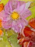 Eisabstraktion mit empfindlichen Blumen später Lizenzfreie Stockfotografie