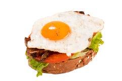 Eisandwich lokalisiert lizenzfreies stockfoto