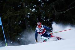 EISATH Florian nel gigante di Men's della tazza di Audi Fis Alpine Skiing World Immagine Stock