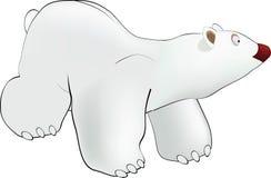 Eisbär lizenzfreie abbildung