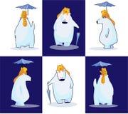 Eisbär, seine Katze und ihr Regenschirm Stockbilder
