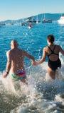 Eisbärschwimmen 2016 in den Nachrichten lizenzfreie stockfotografie