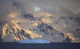 Eisberg in Antarktik Stockfotografie