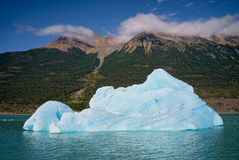 Eisberg im See Argentino, EL Calafate, argentinischer Patagonia Stockbild