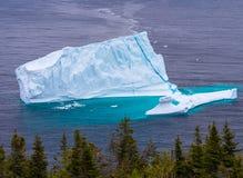 Eisberg in Neufundland lizenzfreie stockfotos
