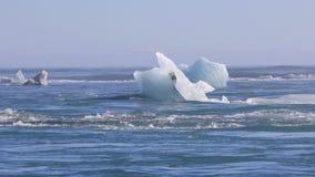 Eisberge, die auf den Nord-Atlantik schwimmen stock video