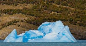 Eisberge im Wasser, der Gletscher Perito Moreno argentinien Stockbilder