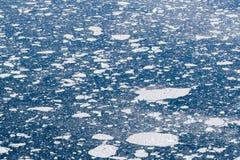 Eisblätter im Ozean Lizenzfreie Stockfotografie