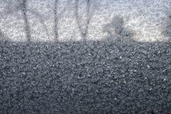 Eisblume vektor abbildung
