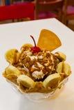 Eiscreme mit Früchten Lizenzfreie Stockfotos