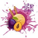 Eiscreme Plum Ball Fruit Dessert Choose Ihr Geschmack-Café-Plakat vektor abbildung