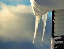 Eiseiszapfen Stockbilder
