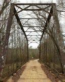 Eisen-Brücke in landwirtschaftlichem South Carolina Lizenzfreie Stockfotos