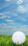 Eisen, das Golfball in der Bewegung schlägt Lizenzfreie Stockbilder