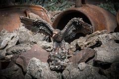 Eisen Eagle auf den Felsen Stockfotografie