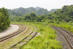 Eisenbahn durch die Berge mit Wald lizenzfreie stockfotos
