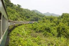 Eisenbahn durch die Berge mit Wald stockbild