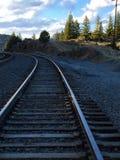 Eisenbahn durch die Kiefer stockbild