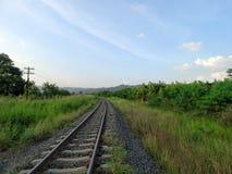 Eisenbahn durch grünes Feld und blauen Himmel Lizenzfreies Stockbild