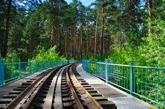 Eisenbahn in einem Wald Stockfotografie