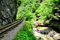 Eisenbahn in Guam-Schlucht auf einer Seite der Felsen, der anderen ein tiefer Abgrund und kochendem schnellem Fluss Lizenzfreies Stockbild